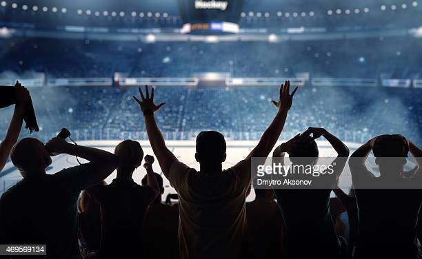 hockey fans at stadium - hockey stock pictures, royalty-free photos & images
