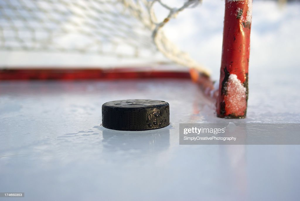 Hockey Net and Puck : Stock Photo