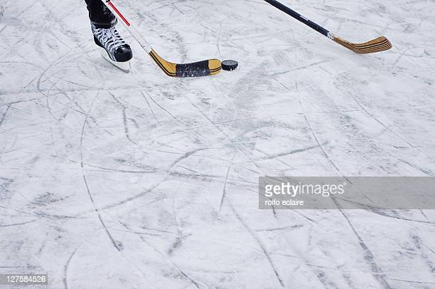 hockey - ice hockey stock pictures, royalty-free photos & images