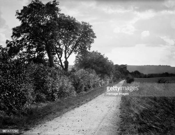 Hodcot Lane, West Ilsley, Berkshire, 1895. Looking down a rural lane towards the West Ilsley Downs in the distance. Artist Henry Taunt.