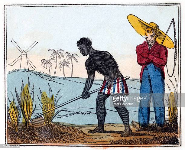 'Hoeing' 1826 From 'The Black Man's Lament or How to Make Sugar' by Amelia Opie
