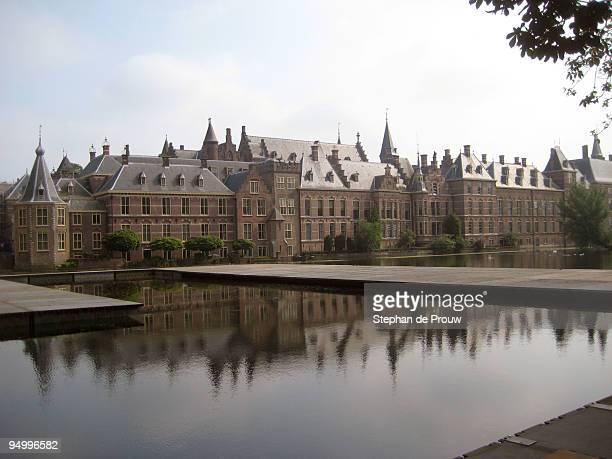 hofvijver - stephan de prouw stock pictures, royalty-free photos & images