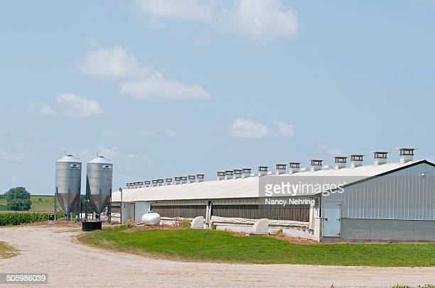 Hog confinement building or hog barn in rural Iowa USA Infrastructure for feeding ventilation and heating shown