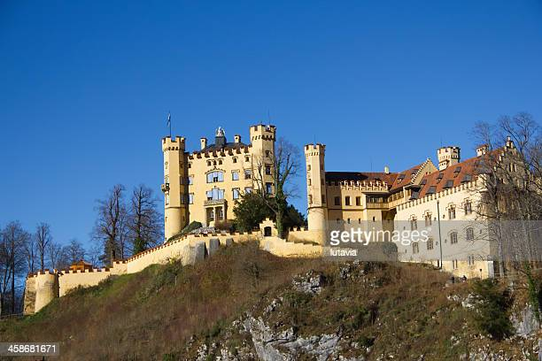 hohenschwangau castle in the bavarian alps of germany - lutavia stock pictures, royalty-free photos & images