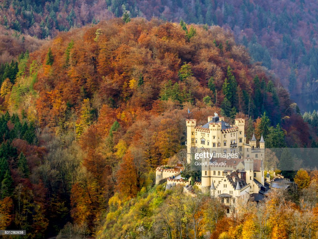 Schloss Hohenschwangau : Stock-Foto