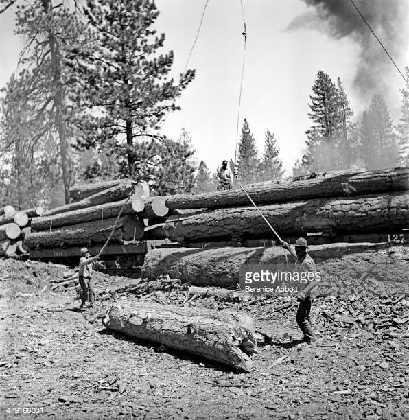 Hoisting the logs onto railroad cars United States circa 1950 Abbott took two series of logging photographs the first in the High Sierra Mountains in...