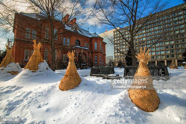 hokkaido government office in sapporo - snow festival stock pictures, royalty-free photos & images