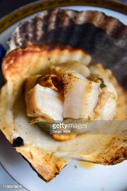 Hokkaido grilled scallop