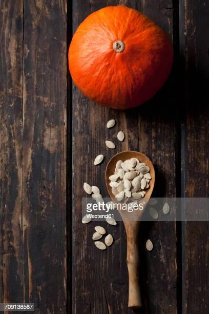Hokkaido pumpkin and wooden spoon of pumpkin seeds on dark wood