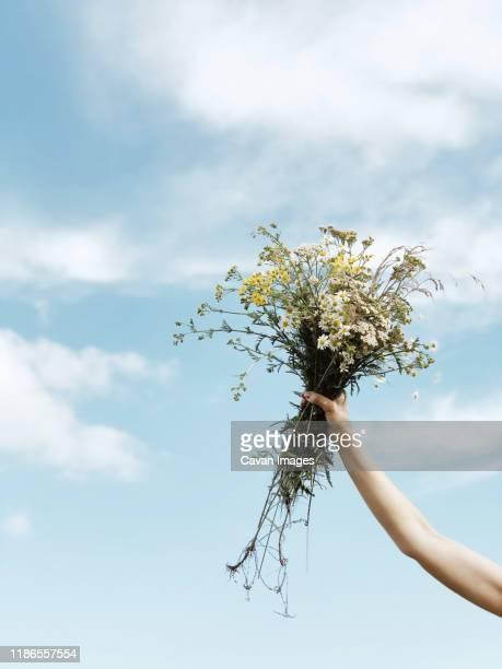 holding a bouquet of  flowers on blue sky background - bouquet de fleurs photos et images de collection