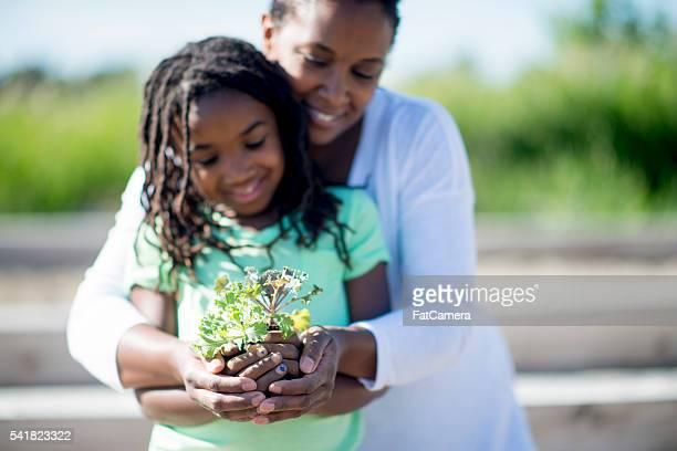 Holding a Plant in the Palm of their Hands