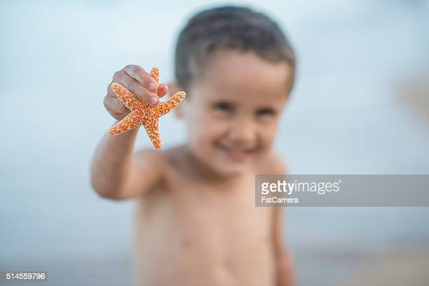 Holding a Starfish on the Beach