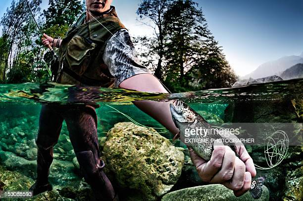 holding a trout - trout stock pictures, royalty-free photos & images