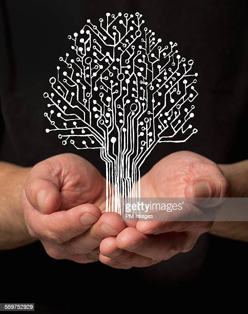 Holding digital tree