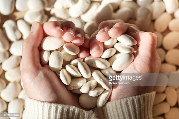 Holding white beans with heart shaped hand.