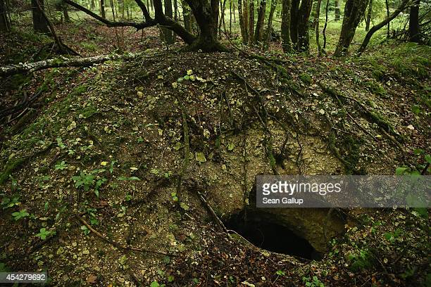A hole indicates the entrance to a former French underground bunker likely seven meters below in the remains of a World War I trench in Bois Azoule...