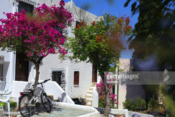 Holiday at Spetses island, Greece