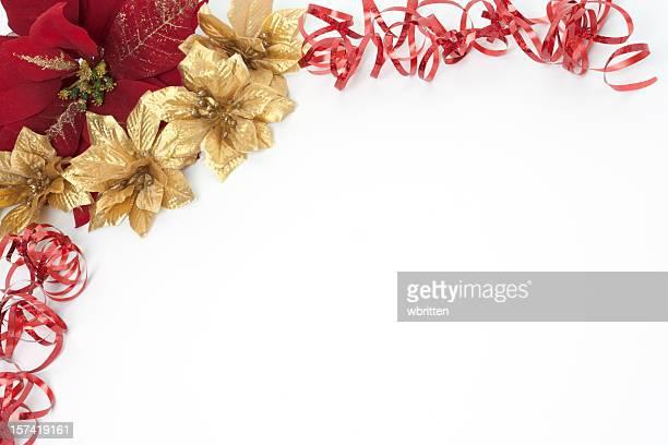 holiday frontera serie - flor de pascua fotografías e imágenes de stock