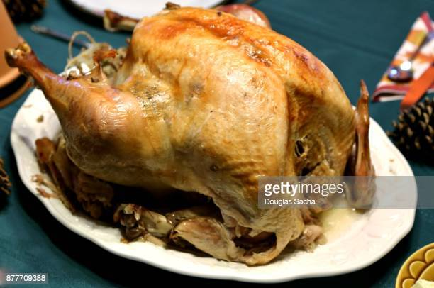 Holiday Feast with Roasted Turkey on a platter