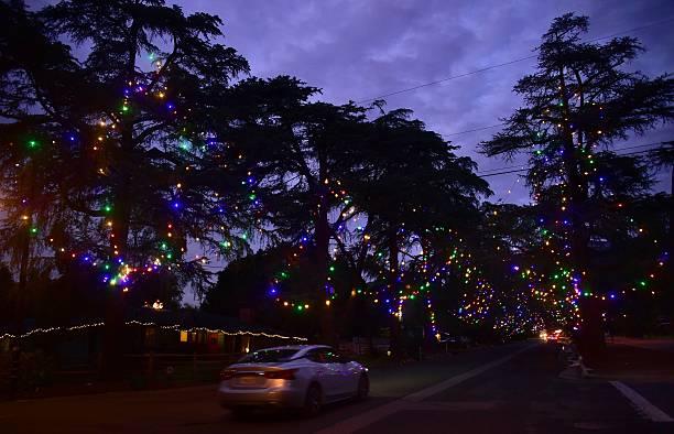 holiday lights decorate christmas tree lane in altadena california december 20 2016