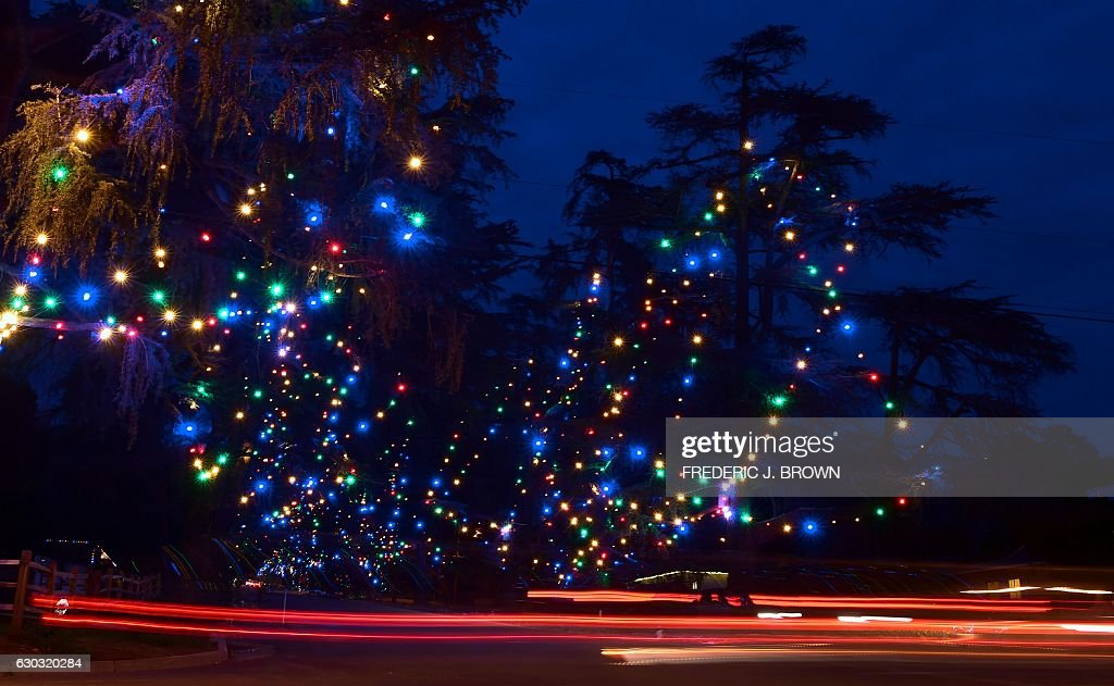 Holiday Lights Decorate Christmas Tree Lane In Altadena California