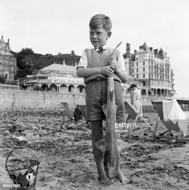 Holiday makers in Llandudno Conwy County Borough Clwyd Wales A young boy on the beach with a big fish 22nd August 1949