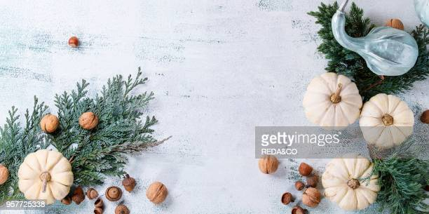 Holiday table decoration with white decorative pumpkins thuja branches walnuts and acorns over white wooden background Top view with space for text