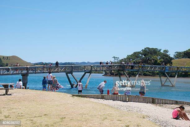 holidaymakers at pataua bridge, whangarei district, northland, nz - whangarei heads stock pictures, royalty-free photos & images