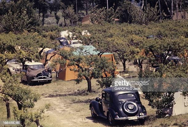 Holidays In A Camping On The French Rivieira Côte d'Azur 1958 Vacances en camping en Méditerranée Des tentes ça et là en toile bleue ou beige sont...
