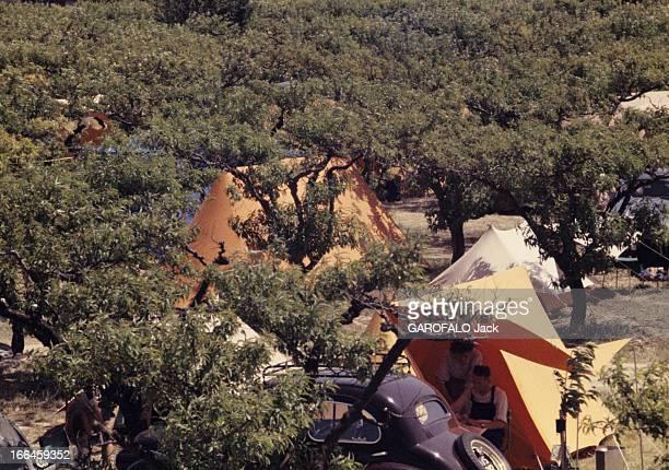 Holidays In A Camping On The French Rivieira Côte d'Azur 1958 Vacances en camping en MéditerranéePrise de vue sur des tentes ça et là en toile bleue...