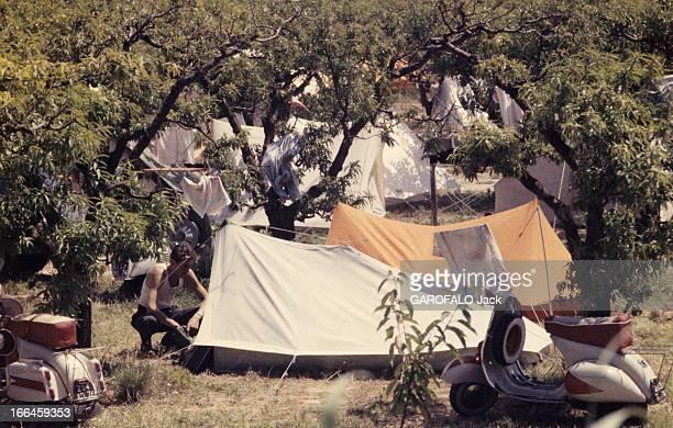 Holidays In A Camping On The French Rivieira Côte d'Azur 1958 Vacances en camping en Méditerranée Prise de vue sur des tentes ça et là en toile beige...