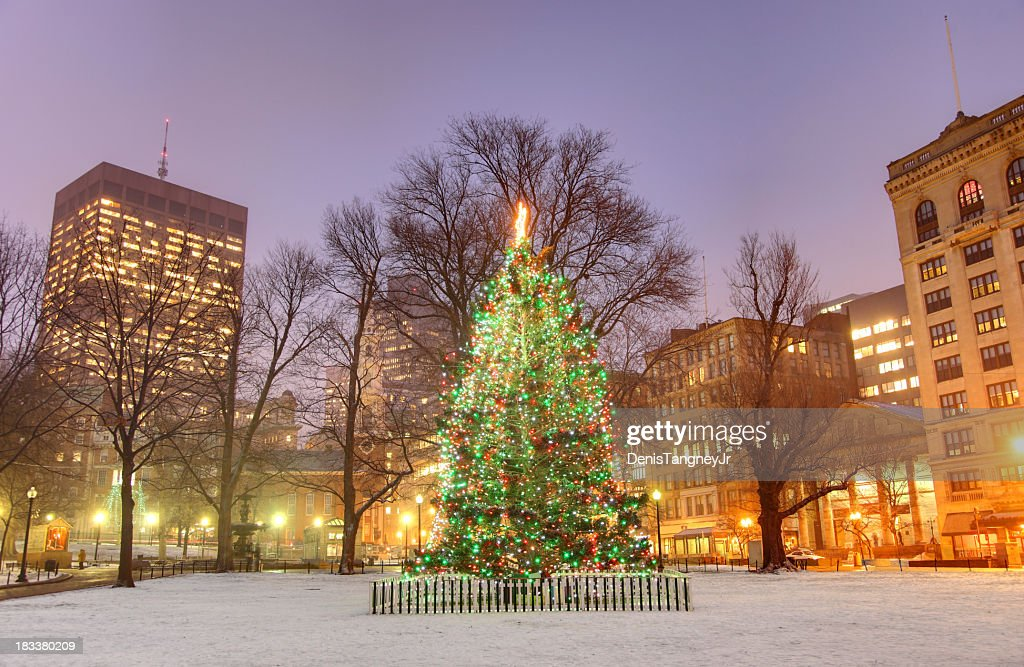 Holidays in Boston : Stock Photo