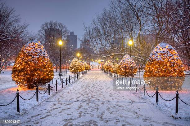 holidays in bostron - boston common stock pictures, royalty-free photos & images