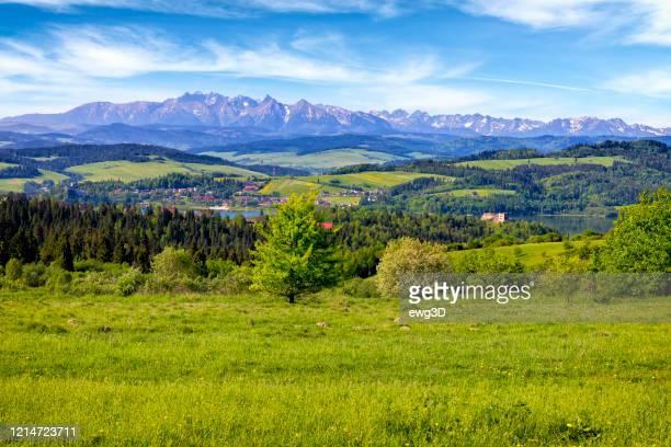 vakantie in polen - zomeruitzicht van de regio podhale naar het tatragebergte - polen stockfoto's en -beelden