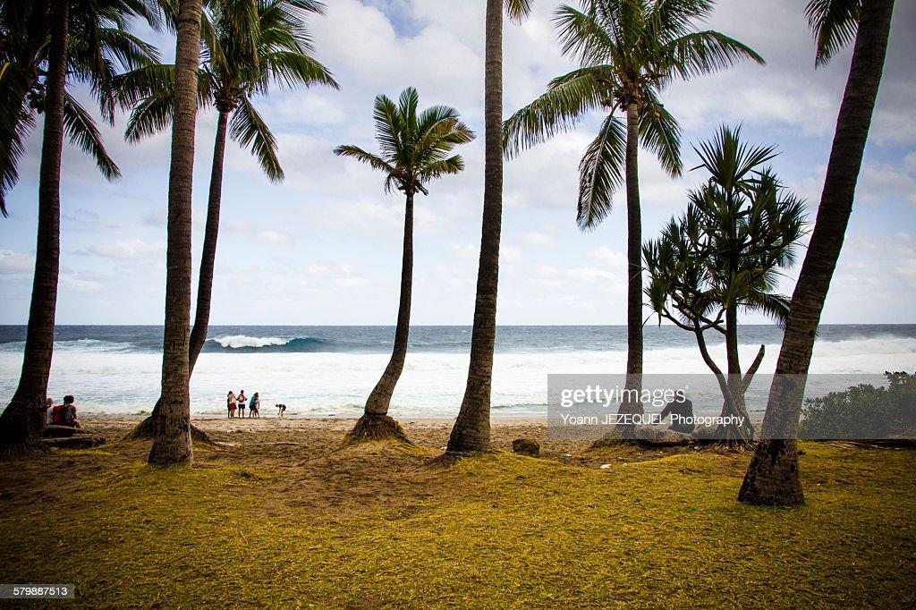 Holidays under the sun, La Réunion : Photo