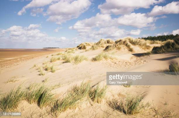 holkham beach - england stock pictures, royalty-free photos & images