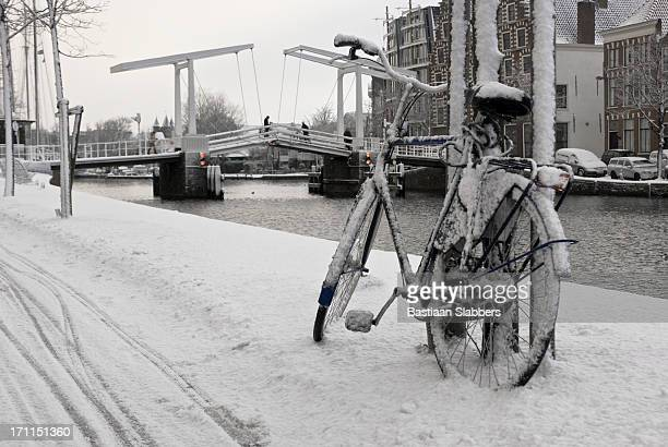 holland winter scene - haarlem stock photos and pictures
