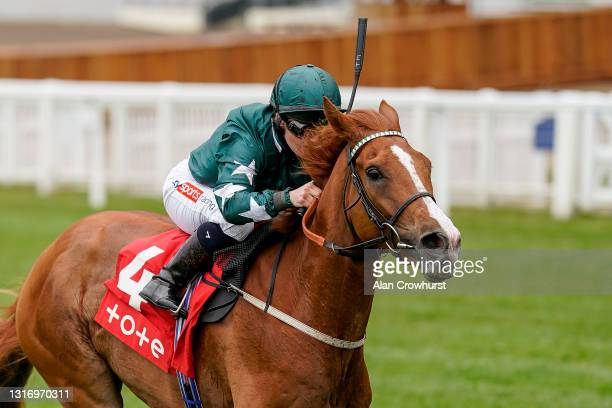 Hollie Doyle riding Louganini win The tote+ Exclusively At tote.co.uk Handicap at Ascot Racecourse on May 08, 2021 in Ascot, England. Only owners are...