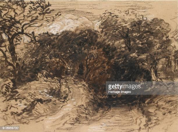 A hollow Lane near Harborne Derbyshire 19th century Dimensions height x width sheet 245 x 328 cm
