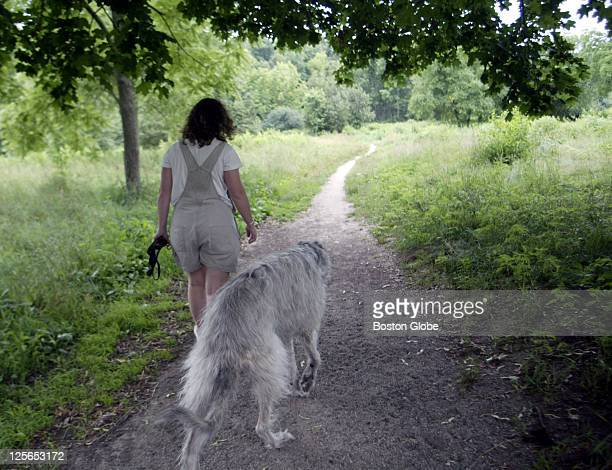 Holly Kennedy of Arlington walks her dog Cara in Lexington at Willard Woords Arlington dog walkers are trying to get a dog run as part of Arlington's...