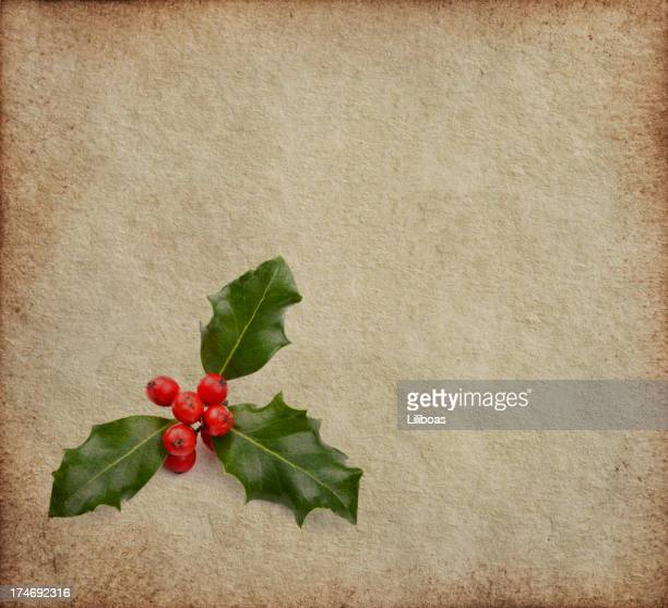 Holly on Texture