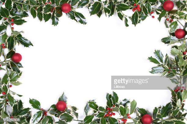 holly series - holly stock pictures, royalty-free photos & images