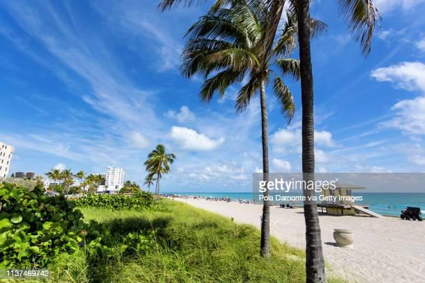 hollywood beach scene at north miami, florida, usa. - フロリダ州ハリウッド ストックフォトと画像