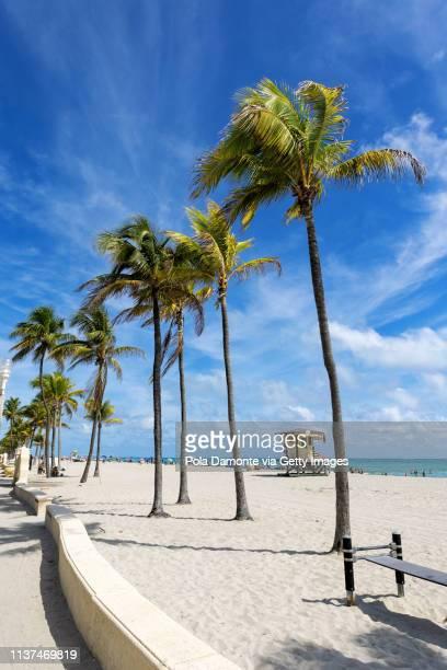 hollywood beach scene at north miami, florida, usa. - miami beach miami stock-fotos und bilder