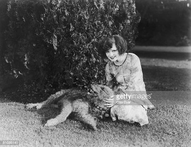 Hollywood film actress Clara Bow poses with her pet Airedale Terrier circa 1930