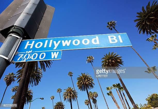 hollywood los angeles - hollywood sign stock pictures, royalty-free photos & images
