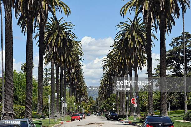 Hollywood Palms and sign