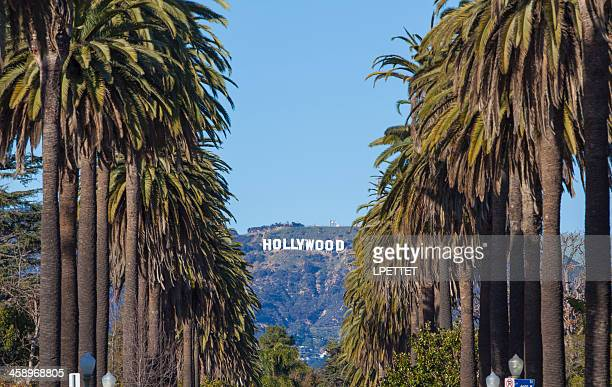 hollywood - hollywood sign stock pictures, royalty-free photos & images