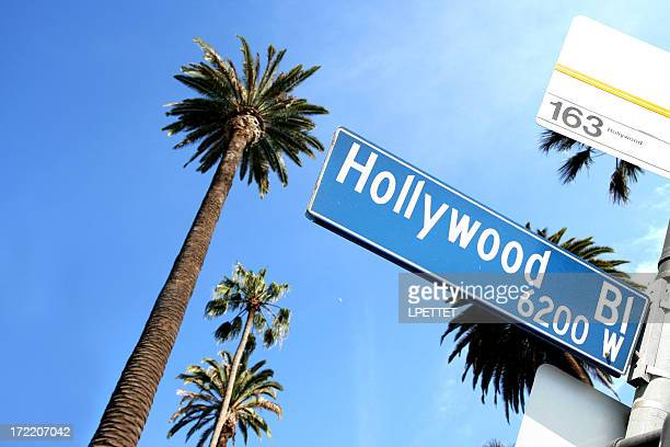 Hollywood Road Sign With Palm Trees In The Background
