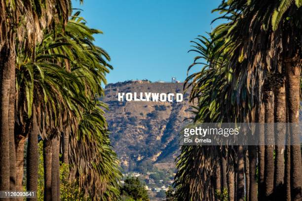 hollywood sign from central la - cidade de los angeles imagens e fotografias de stock